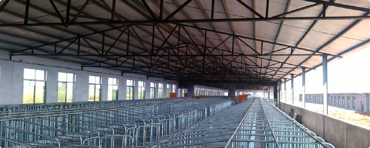 湖南郴州养殖厂新建项目